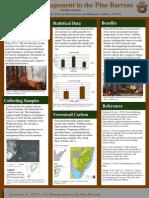 pine barrens poster2