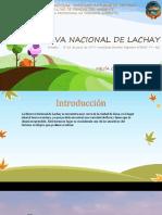 Reserva Nacional Lachay