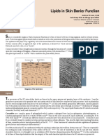 Lipid Skin Barrien Function Lam 2010