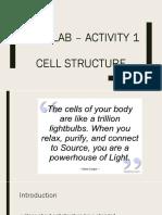 Post Lab – Activity 1 cell bio.pptx
