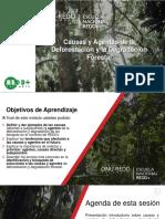 Modulo 4 C&a Deforestación Degradación Forestal 2da Escuela v2