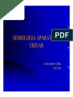 Semiologia Ap Urinar