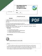 Ficha Formativa 20