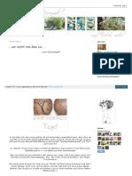 Garten Keramik Blogspot de 2011 05 Wie Macht Man Denn Nur Ht
