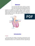 Artifical+Heart+Valve