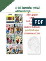 Apprendimento Delle Matematiche e Contributi Della Neurofisiologia