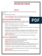 MUSCULOS DEL CUELLO.docx