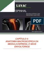 Neuroanatomia Da Medula Espinhal