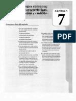 Capítulo 7 Acciones Comunes.pdf