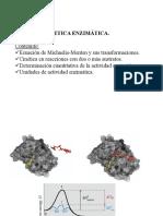 Tema 3.3 Cinetica Enzimatica introducion