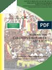 RCP Adultos