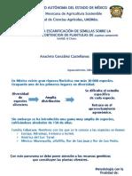 Presentación SOMAS 2015 Anacleto Glez C. Imágen