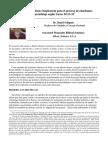 ensayo competencias.pdf