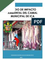 EIA Camal Municipal de Ica