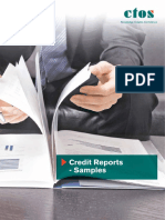 CTOS Credit Sample Report