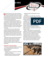 FreshCowManagement Spanish Web