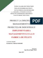 proiect master1