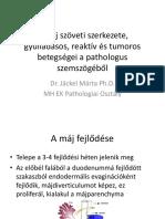 1 Dr Jackel Marta