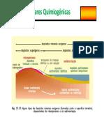 Sedimentares        alu.pdf