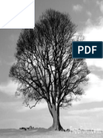 Tree-Black-and-White_web.pdf