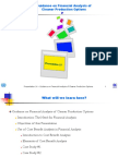 Prst_14_Guidance on financial analysis of CP options.ppt