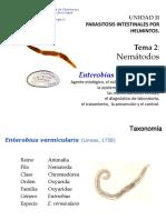 Tema 2 Helmintos Nemátodos 2.3 Enterobius Vermicularis