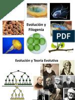 Clase Evolución