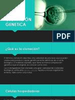 CLONACIÓN GENETICA