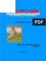 76101483 Texto Guia de Cirugia de Animales Menores