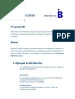 Bases Generales Proyecto Bi