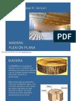 FlexionPlana2013.pdf