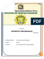 apendices abdominales