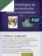 diapositiva horticultura