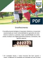 Abordagem Integral Do Idoso 2017.2