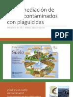 Biorremediación de Suelos Contaminados Con Plaguicidas