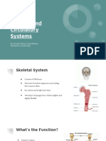 skeletal and circulatory systems
