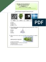 4º Básico Ciencias Naturales Prueba de Diagnóstico