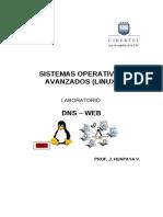 SERVIDOR DNS - WEB.pdf