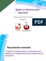 Puntos Algidos en Reanimacion Neonatal-2