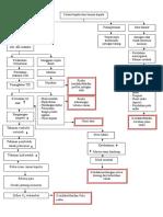 pathway CKB.doc