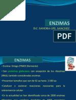 2.1 ENZIMAS 2017 (1).pptx