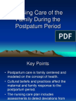 Nursing Care of the Postpartum Woman 2015 Use This One