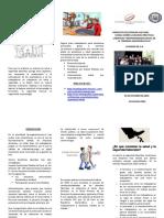 Material didáctico-triptico..pdf