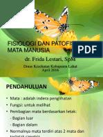 Fisiologi Dan Patofisiologi Mata Manusia