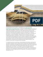 migracion de hidrocarburos.docx