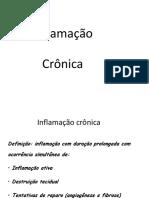 Inflamacao Cronica - Fabiana Paim