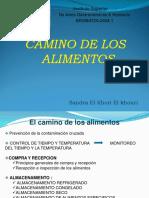 Clase_Camino_de_los_alimentos[2] - copia.ppt