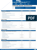 4 daymax size workout.pdf