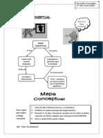 MAPA CONCEP 2SEC.docx