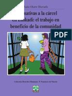 ALTERNATIVAS A LA CARCEL.pdf